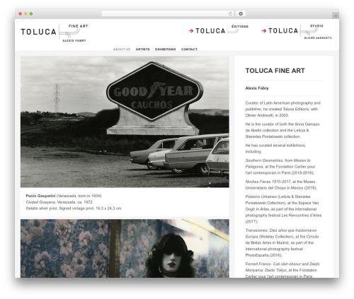 Studiofolio best WordPress template - tolucafineart.com
