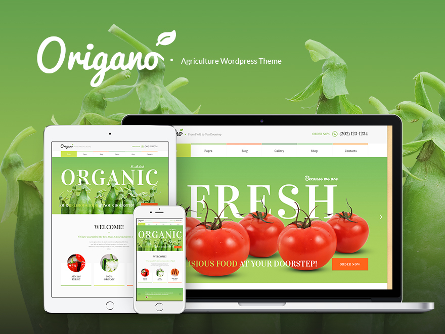Theme WordPress Origano