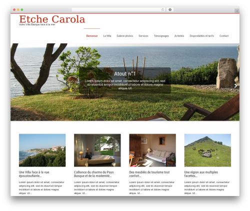 Businessweb Plus business WordPress theme - etchecarola.com