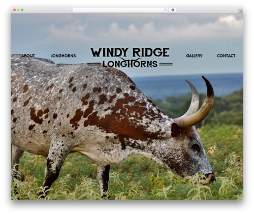 Free WordPress WooCommerce Custom Overlays plugin - windyridgelonghorns.com