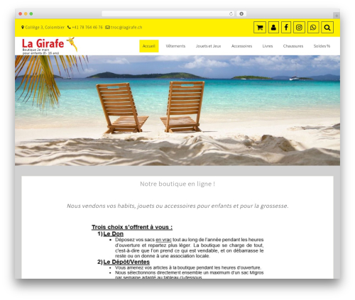 Best eCommerce WP template - trocodile.ch