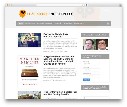 Best WordPress template Makery - prudently.com