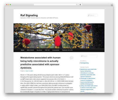 Twenty Eleven best free WordPress theme - raf-signaling.com