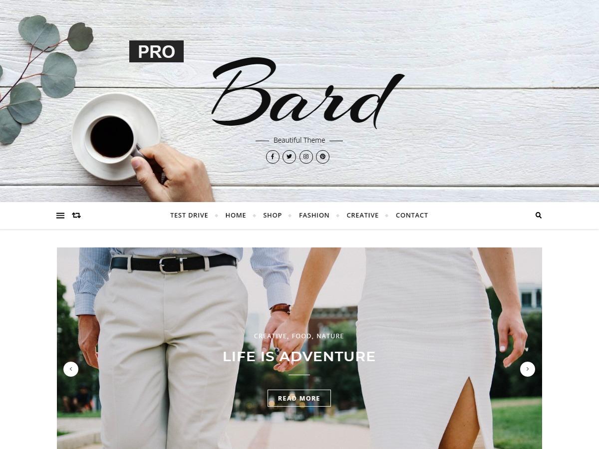 Best WordPress template Bard Pro