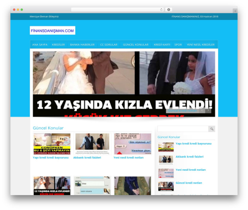 Best WordPress template Gölge Wordpress Teması - finansdanisman.com