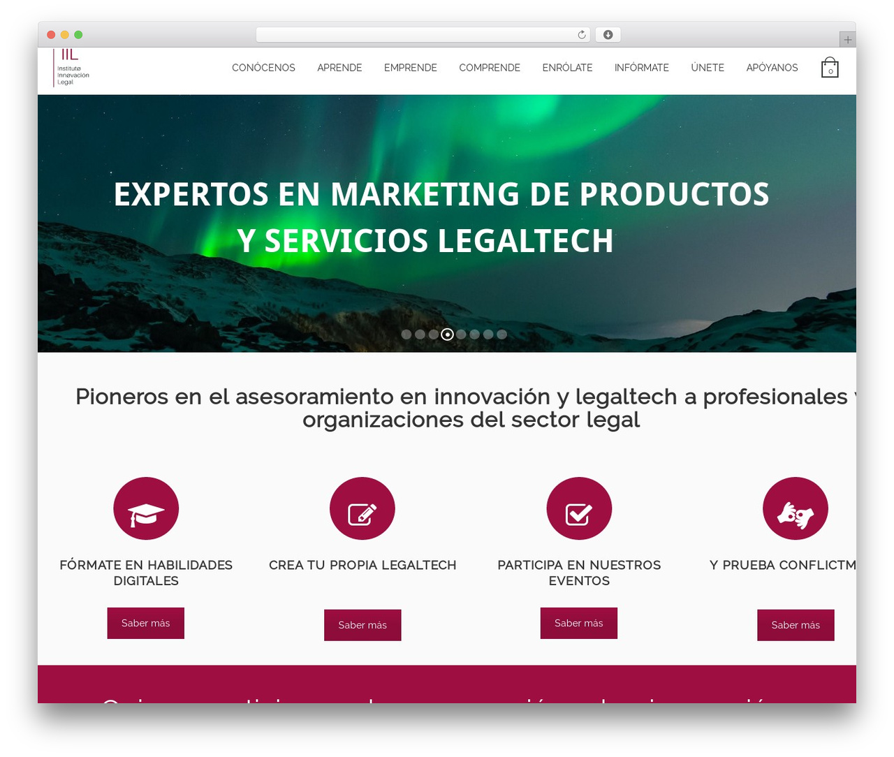 Sanigo top WordPress theme - institutodeinnovacionlegal.com