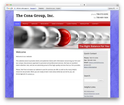 WP theme Customized - theconagroup.com