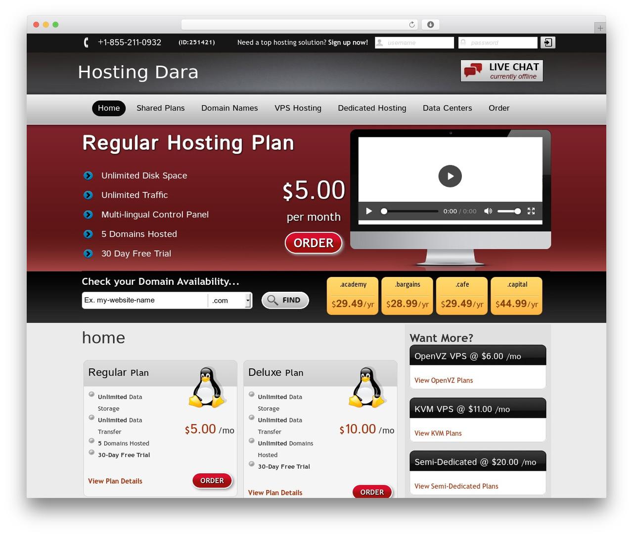New Evolution best WordPress template - hostingdara.com