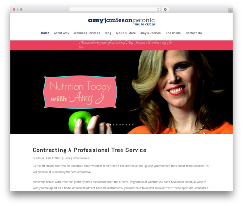 Divi premium WordPress theme - amyjtoday.com