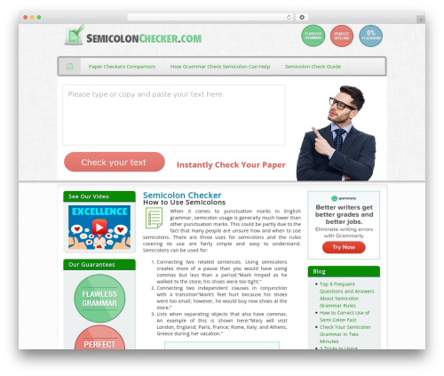 TUBORG WordPress theme - semicolonchecker.com