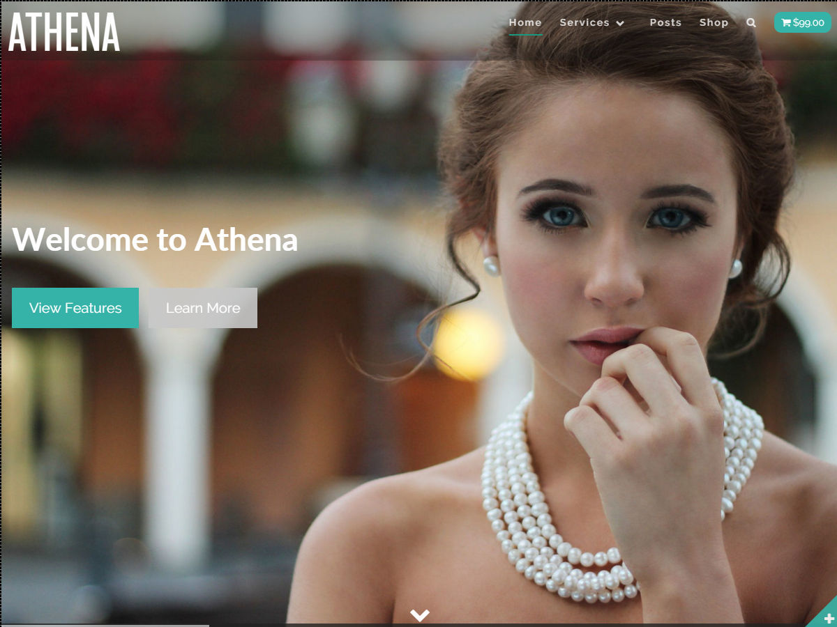 Athena child WordPress blog template