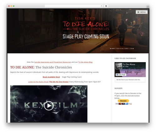 myStore WordPress theme design - todiealone.com