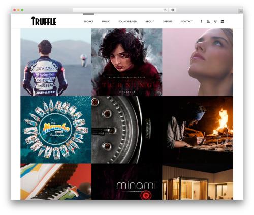 Stardust WordPress theme - trufflemusica.com