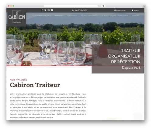 Template WordPress Theme BMS - cabiron.com