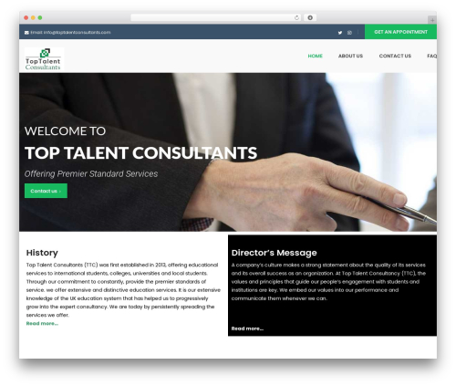 WordPress theme FO - toptalentconsultants.com