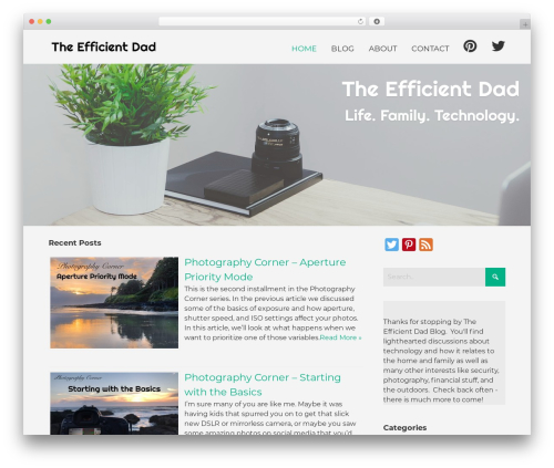 Bento free WP theme - theefficientdad.com