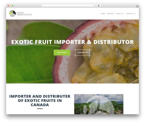 Perth template WordPress free - smartnaturalcircle.com