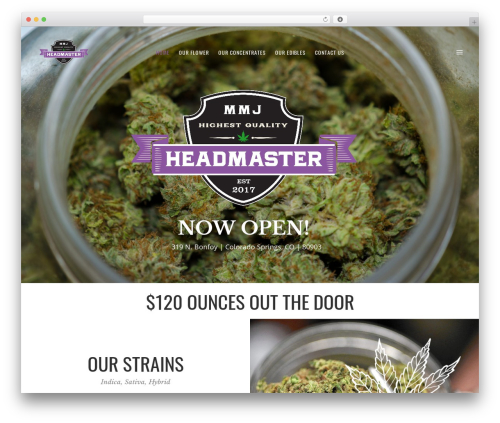Revolver medical WordPress theme - headmastermmj.com