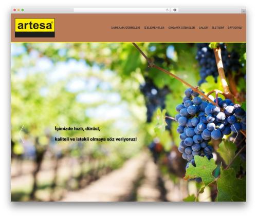 Best WordPress template AccessPress Parallax - artesalimited.com