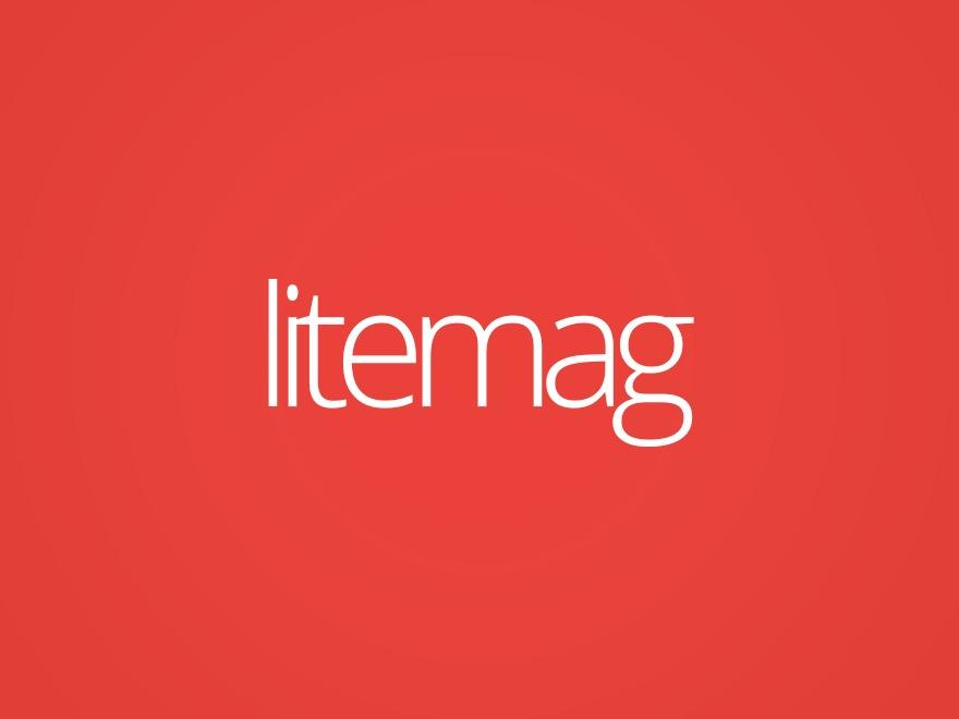 LiteMag by Bluthemes (shared on wplocker.com) best WordPress template