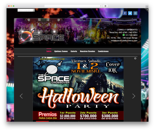Template WordPress Avada - spacemenga.com