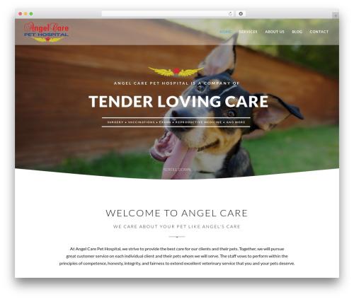 EXO Theme template WordPress - angelcareph.com