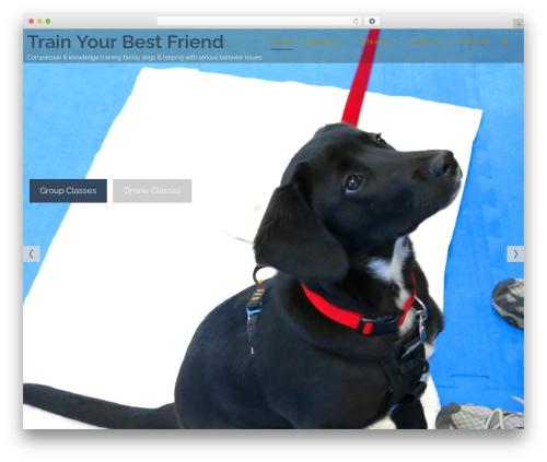 Theme WordPress Athena - trainyourbestfriend.com