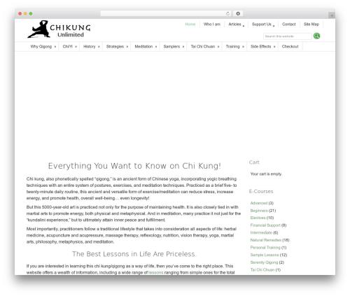 Dynamik-Gen template WordPress - chikung-unlimited.com
