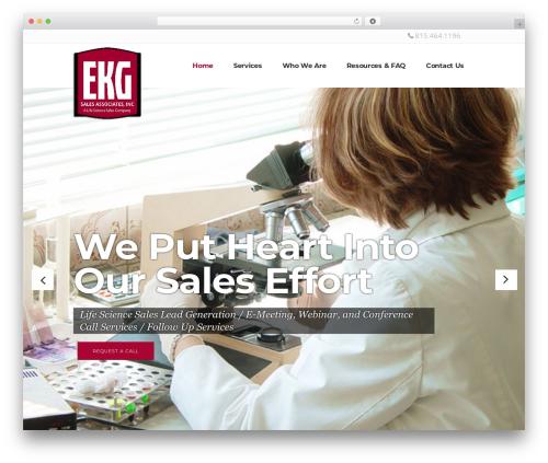 Pitch company WordPress theme - ekgsalesinc.com
