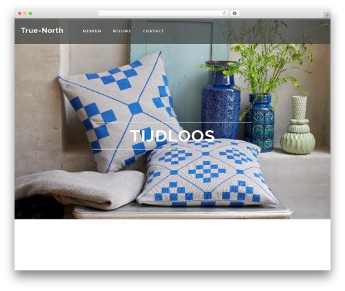 Austin premium WordPress theme - true-north.nl