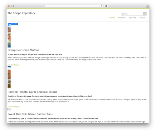 Best WordPress template YDG Custom Theme - thereciperepository.com