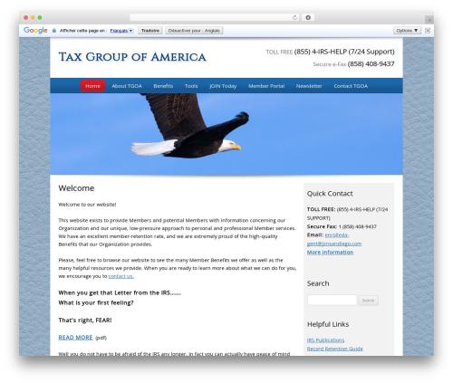Customized best WordPress theme - taxgroupofamerica.com