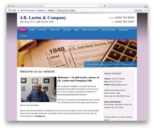 Customized company WordPress theme - taxguyofli.com