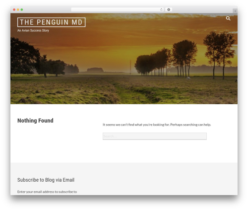 Radium WordPress theme design - thepenguinmd.com
