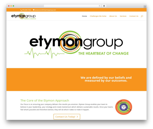 WordPress template Divi - etymongroup.com