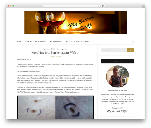 WordPress theme Olsen Light - mysecondshift.com