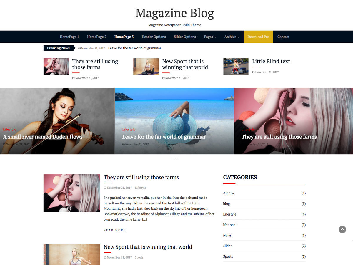 Magazine Blog WordPress shopping theme