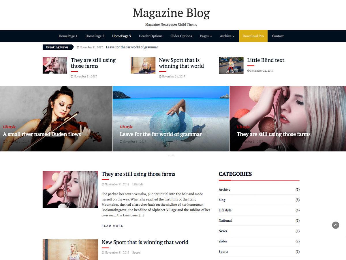 Magazine Blog WordPress shopping theme