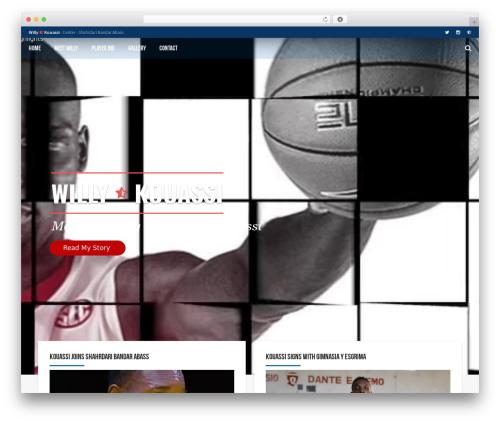 AllStar WordPress theme - willykouassi.com