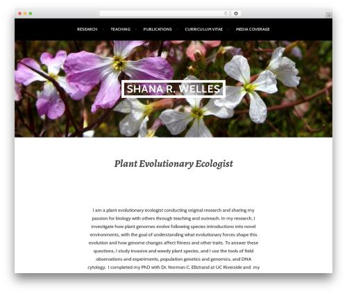 Argent free WP theme - shanawelles.com