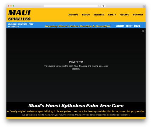 WordPress wpforms-captcha plugin - mauispikeless.com