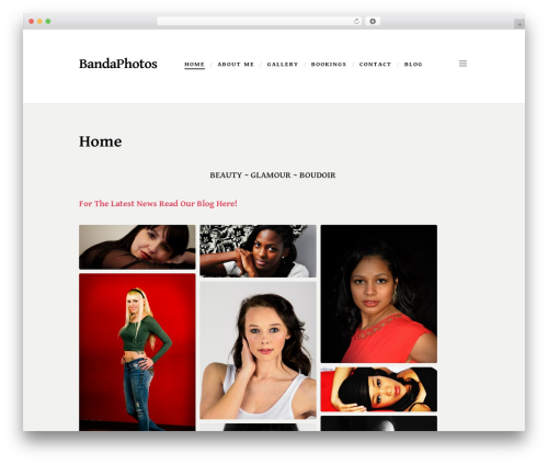 Scripted WordPress theme download - bandaphotos.com