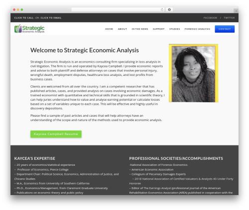 Best WordPress theme Catalyst - strategiceconomicanalysis.com