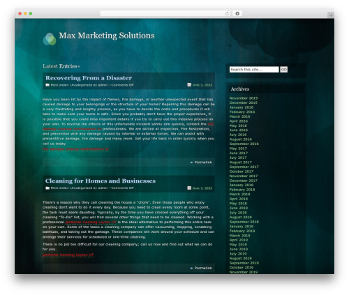 Motion WP template - maxmarketingsolutions.com