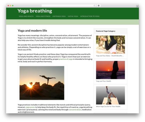 Viral by MyThemeShop WordPress ecommerce theme - yoga-breathing.com