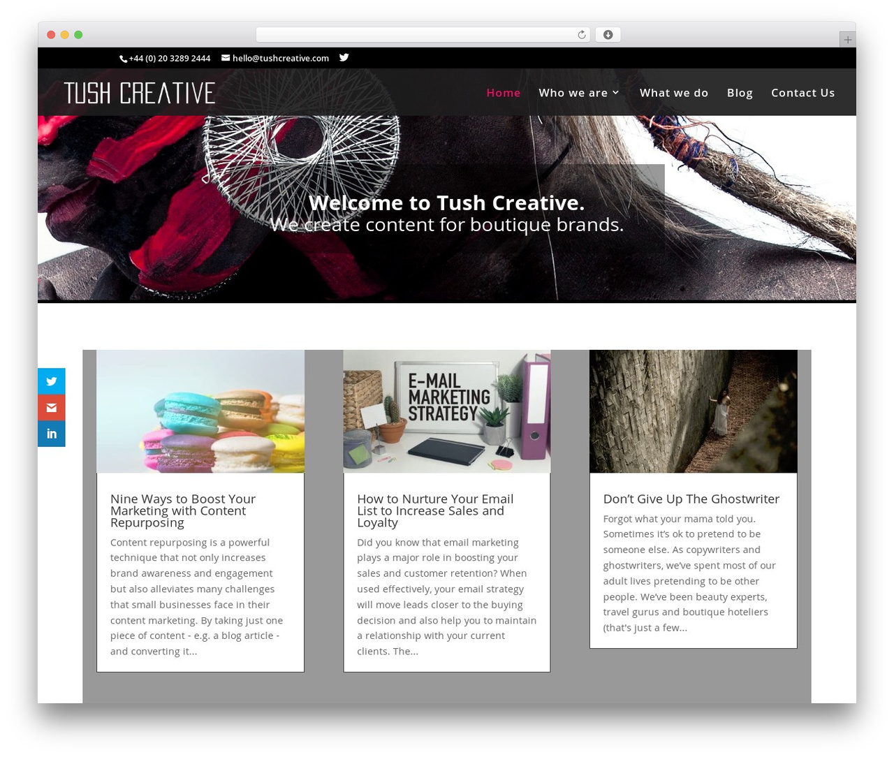 Divi WordPress theme by Elegant Themes - tushcreative.com