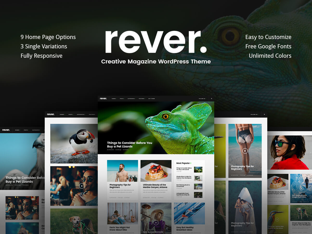 Rever WordPress blog template