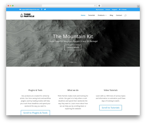Theme WordPress Divi - thinkparticle.com