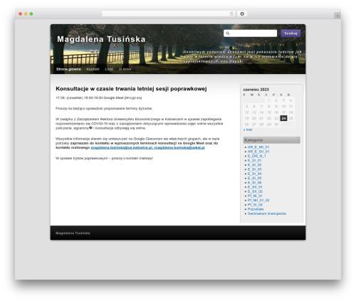 Third Style WordPress website template - tusinska.pl