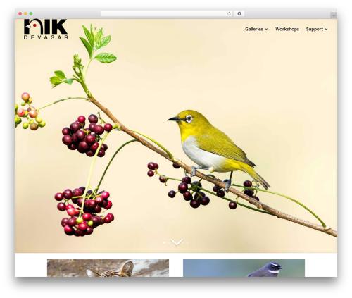 Divi photography WordPress theme - nikimages.com